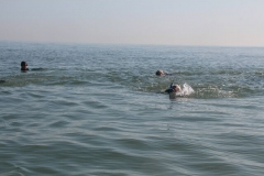 Opale longe cote nage avec palmes (120)