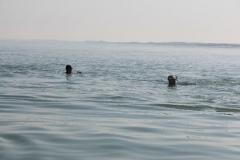 Opale longe cote nage avec palmes (146)