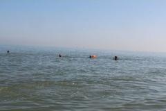 Opale longe cote nage avec palmes (164)