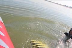 Opale longe cote nage avec palmes (231)