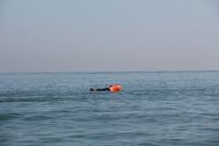 Opale longe cote nage avec palmes (37)