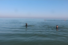 Opale longe cote nage avec palmes (41)