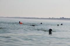 Opale longe cote nage avec palmes (84)