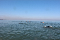 Opale longe cote nage avec palmes (93)