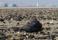 Du charbon sur la plage de Malo-les-Bains!