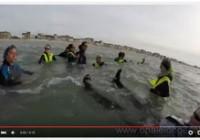 Vidéo 27 Mai 2015 – 18H30
