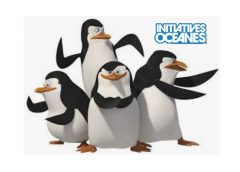 Pingouins en colère! Initiatives Océanes.