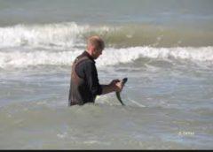 Mercredi 3 avril 2019, balade aquatique à Dunkerque