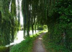 Tour de l'Audomarrois: Du 1 au 3 Mai 2020